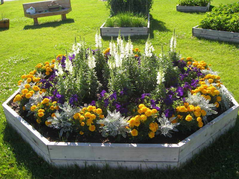 Annual-Flower-Garden-Designs
