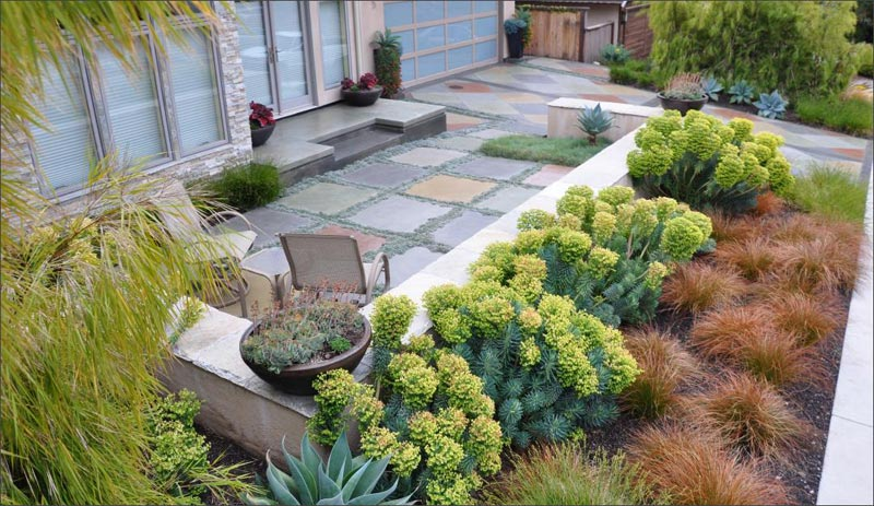 Backyard-Landscaping-Without-Grass