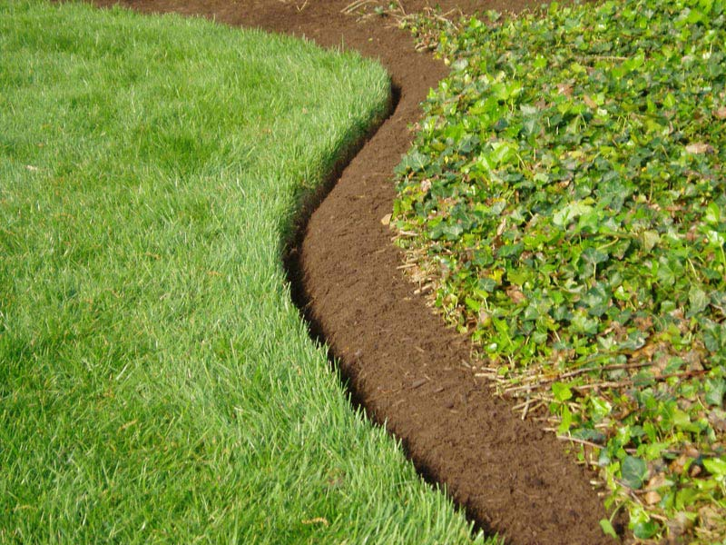 Cheap-Landscaping-Edging-Ideas