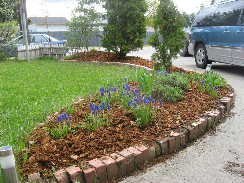 Cheap-Landscaping-Ideas-For-Front-Yard