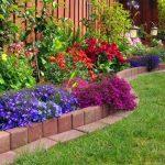 Cheap-Landscaping-Tricks