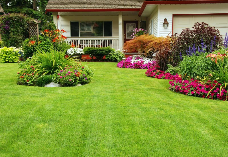 Curb-Appeal-Landscaping-Cambridge