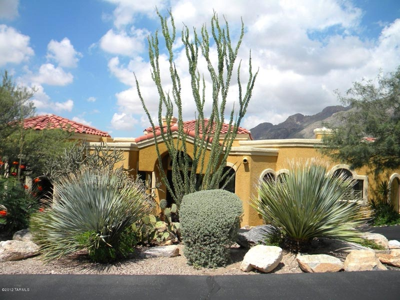Desert-Landscape-Design-Queens