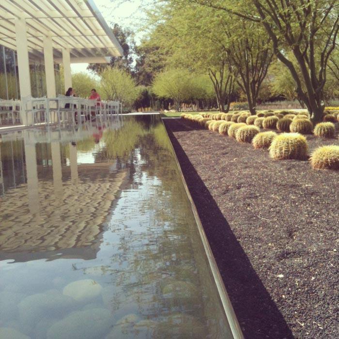 Desert-Landscape-Design-Quincy