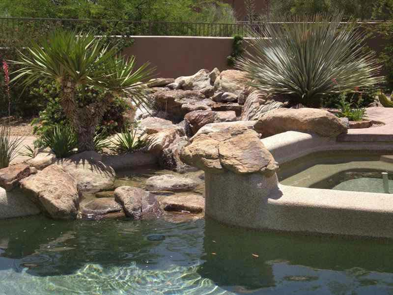 Desert-Landscaping-Around-Pool