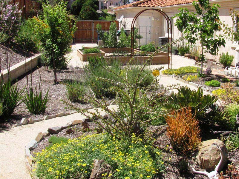 Desert-Landscaping-For-Small-Backyards