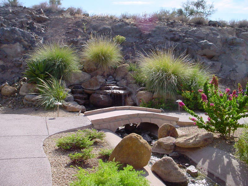 Desert-Landscaping-Ideas-Pictures