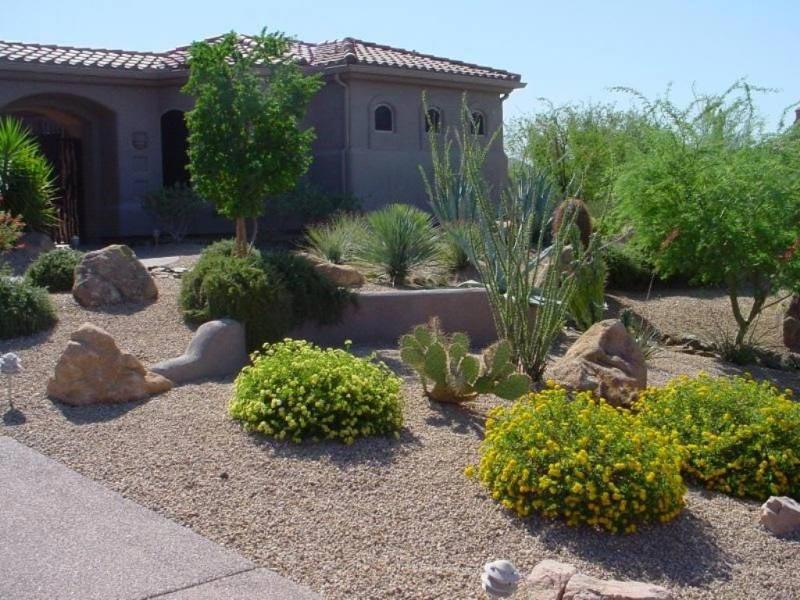 Desert-Landscaping-Las-Vegas