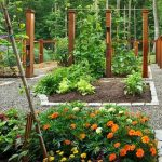 Diy-Landscaping-Ideas-Pinterest
