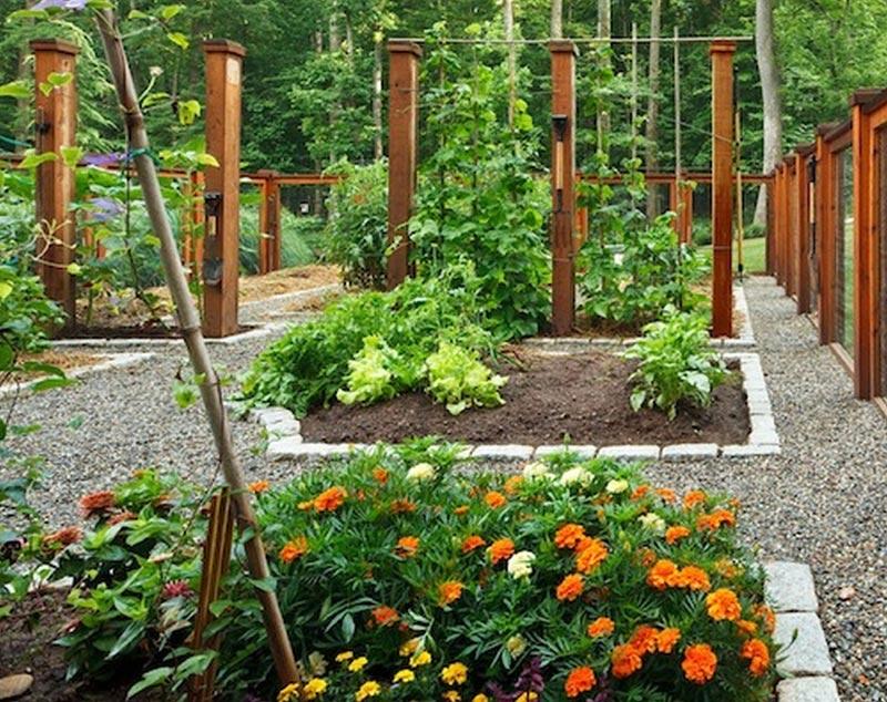 Diy-Landscaping-Ideas-Pinterest