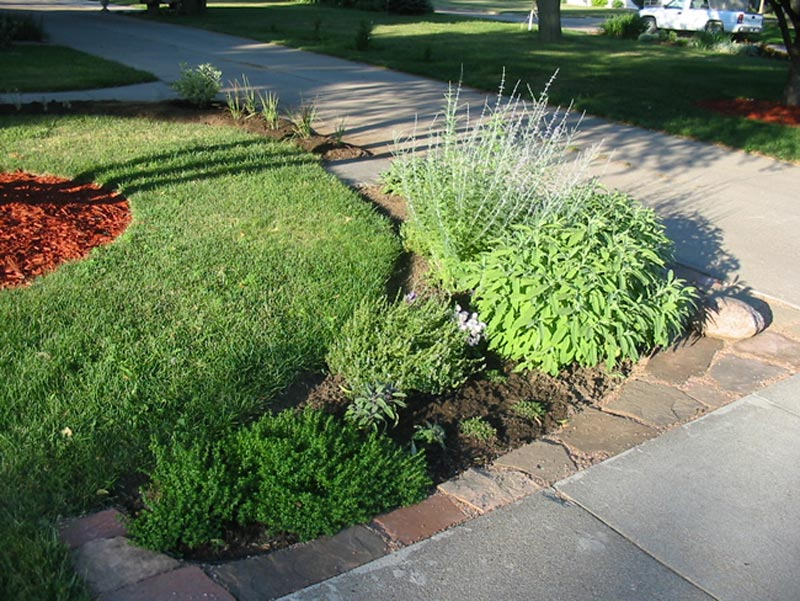 Driveway-Landscaping-Ideas-Plants