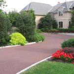 Driveway-Landscaping-Ideas-With-Palm