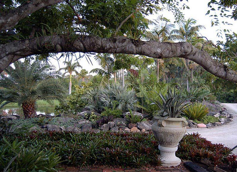 Drought-Tolerant-Landscape-Design-Hamptons