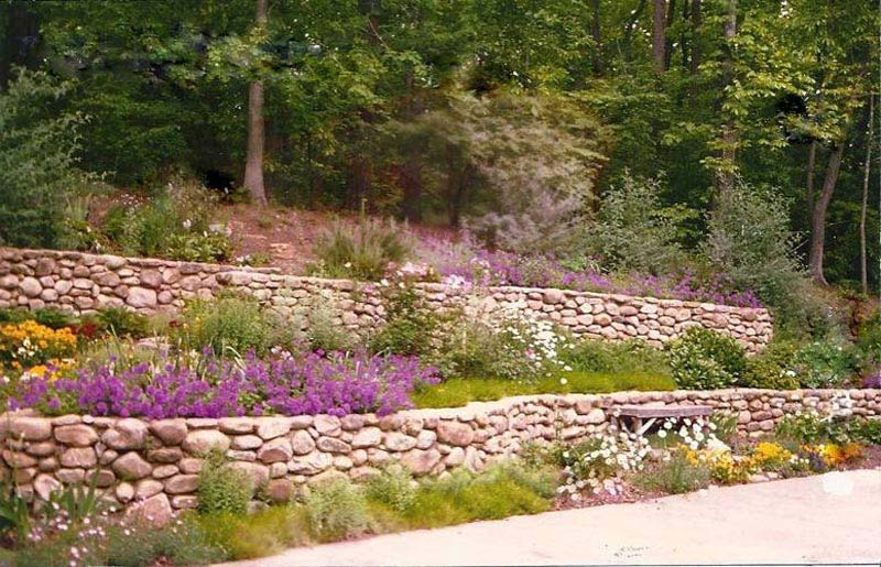 Drought-Tolerant-Landscape-Design-Hill