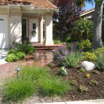 Drought-Tolerant-Landscape-Design-Kingwood