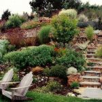 Drought-Tolerant-Landscape-Design-Knoxville