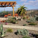 Drought-Tolerant-Landscape-Design-Photos