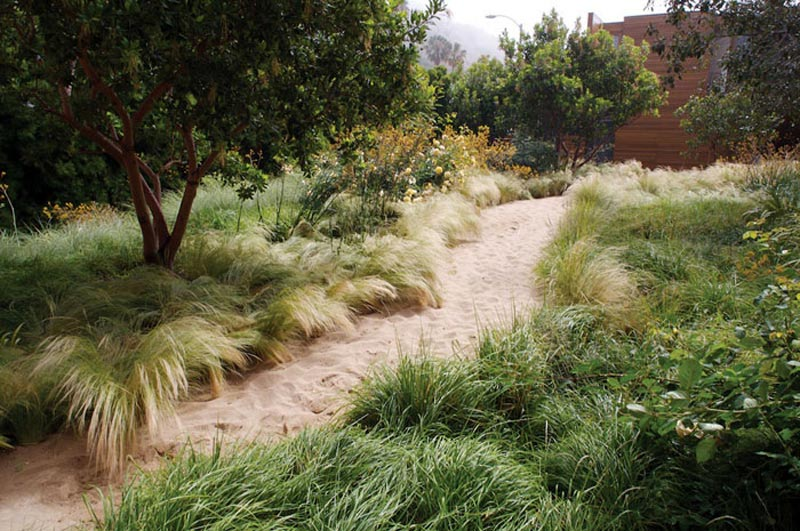 Drought-Tolerant-Landscape-Design-Plans