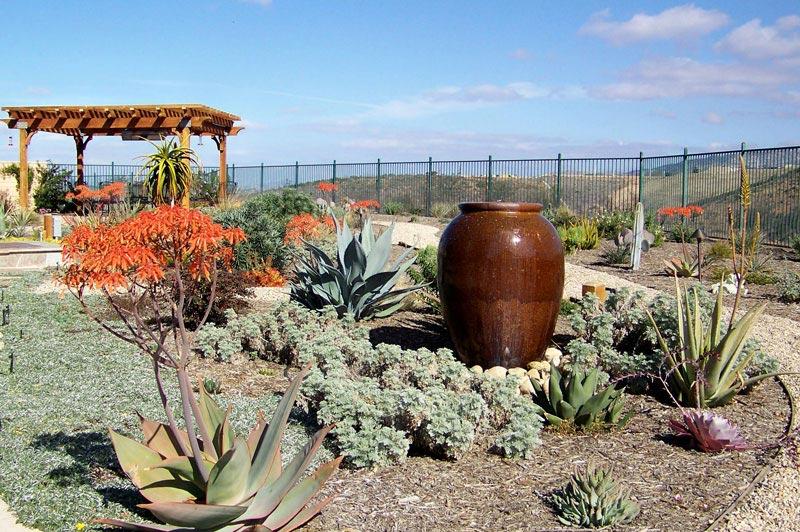 Drought-Tolerant-Landscape-Design