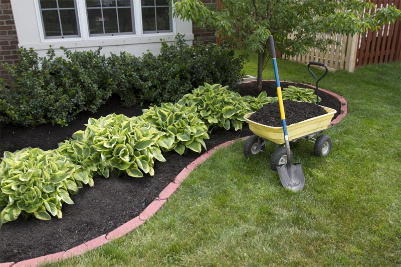Easy-Cheap-Landscaping-Ideas