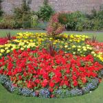 Flower-Beds-Ideas