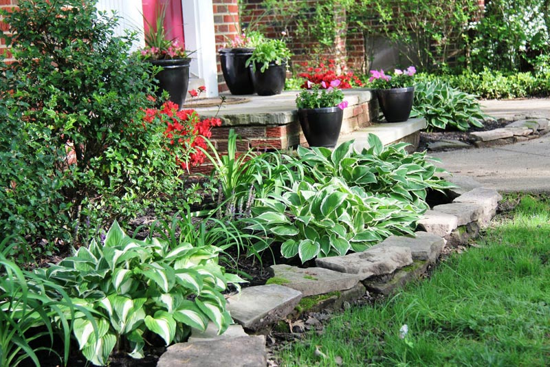 Flower beds against house landscape design for Backyard flower bed ideas