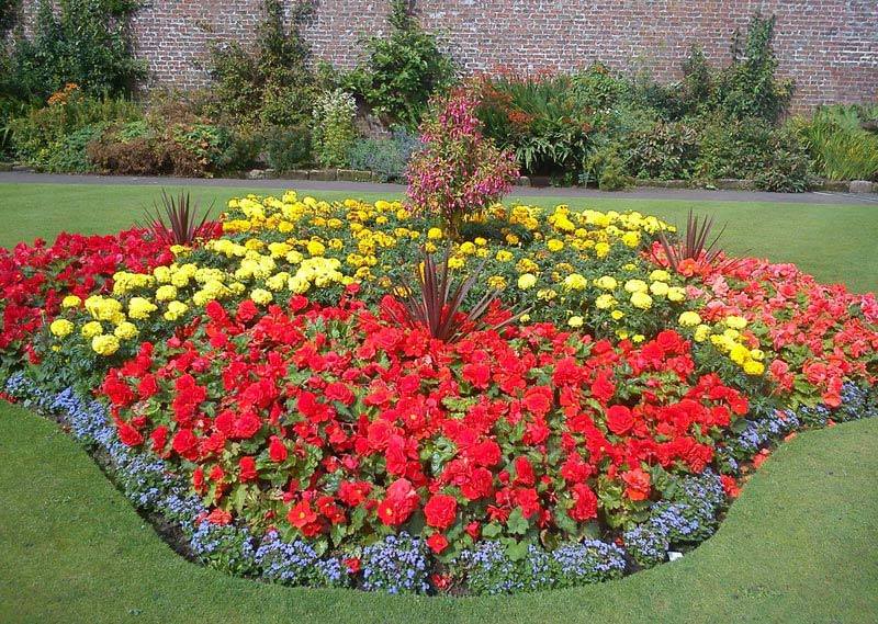 flower garden layout examples landscape design