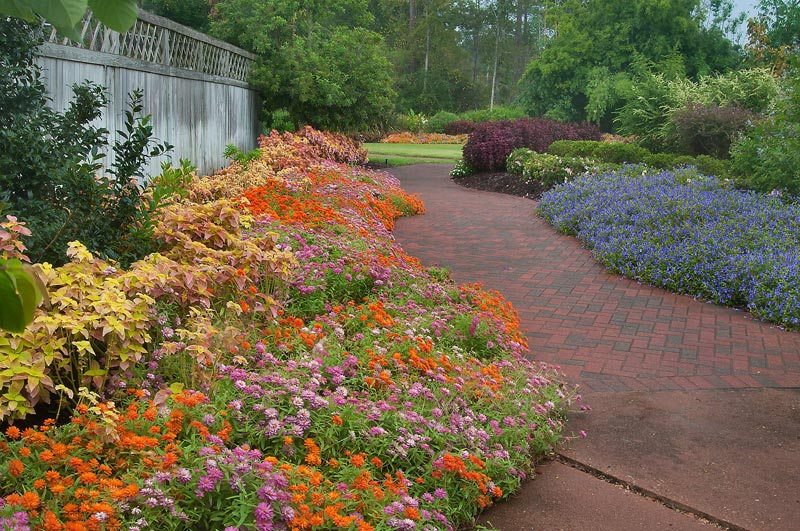 Flower-Beds-Texas