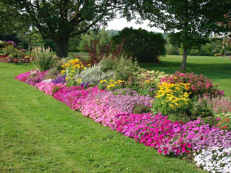 Flower-Garden-Border-Ideas