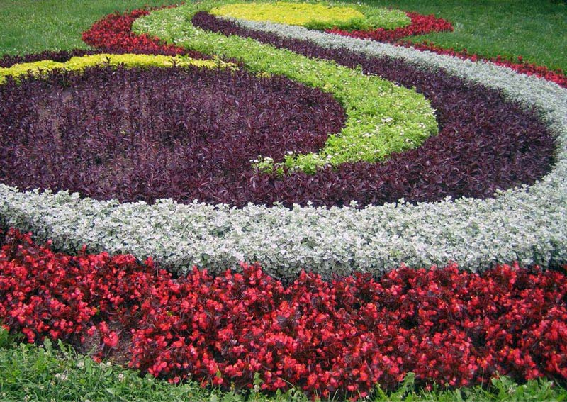 Flower Garden Design annual flower bed designs with wooden board Flower Garden Plans Layout Landscape Design