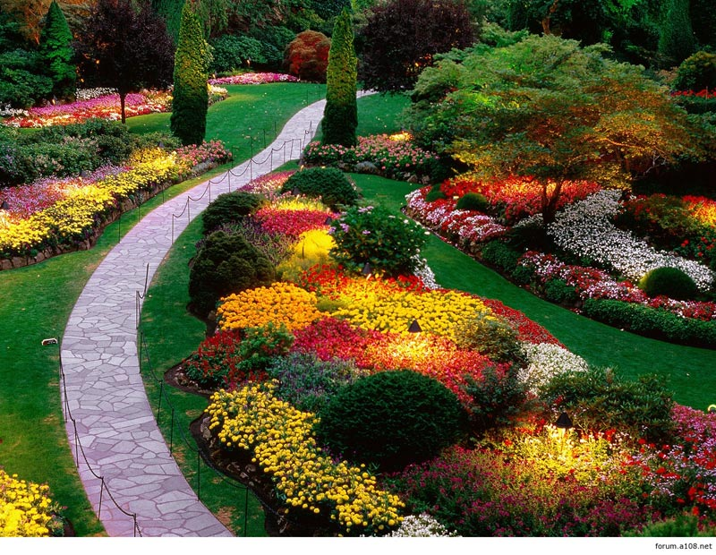 Flower-Garden-Edging-Ideas