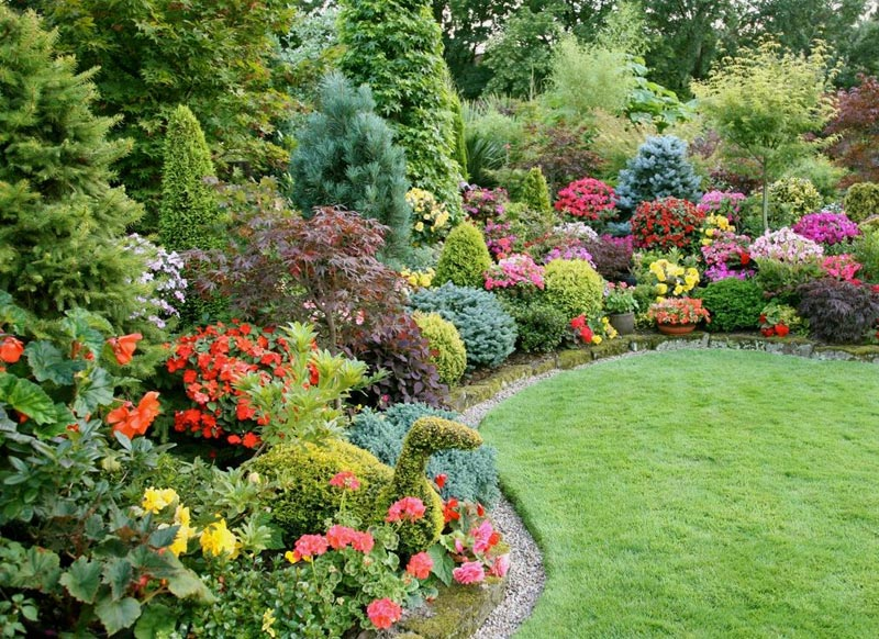 Flower garden ideas full sun landscape design for Garden design ideas for medium gardens