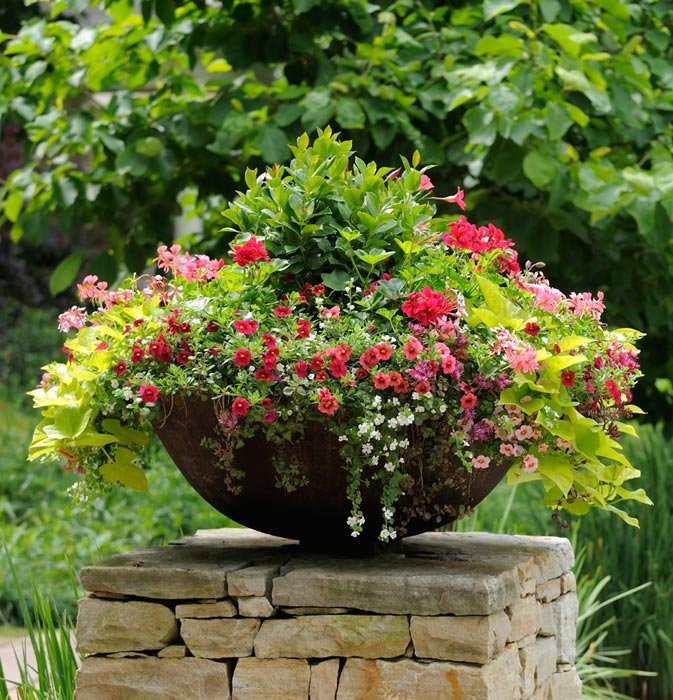 Ideas For Flower Garden Designs | Landscape Design