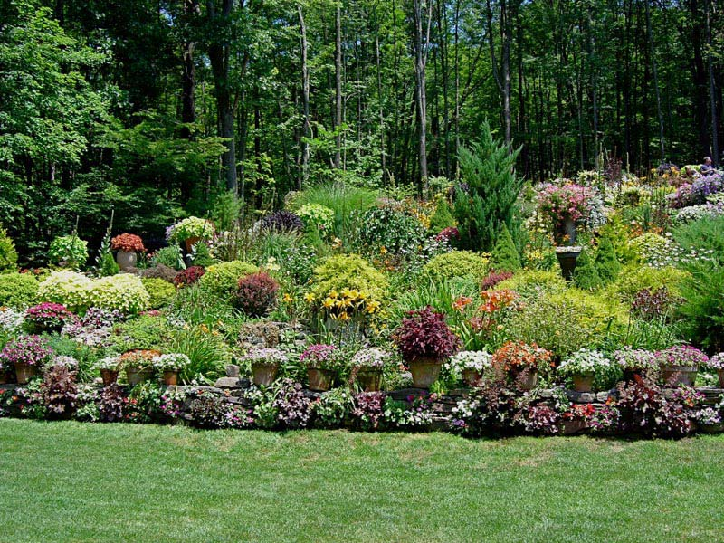 Tips to choose best hillside landscaping packages for Landscaping rocks erie pa