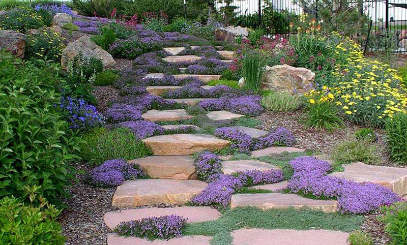 Hillside landscaping steps landscape design for Hillside landscaping
