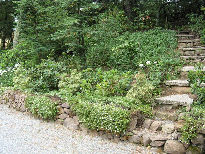 Hillside-Landscaping-Ideas
