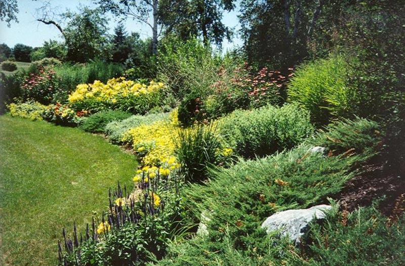 Hillside-Landscaping-Photos