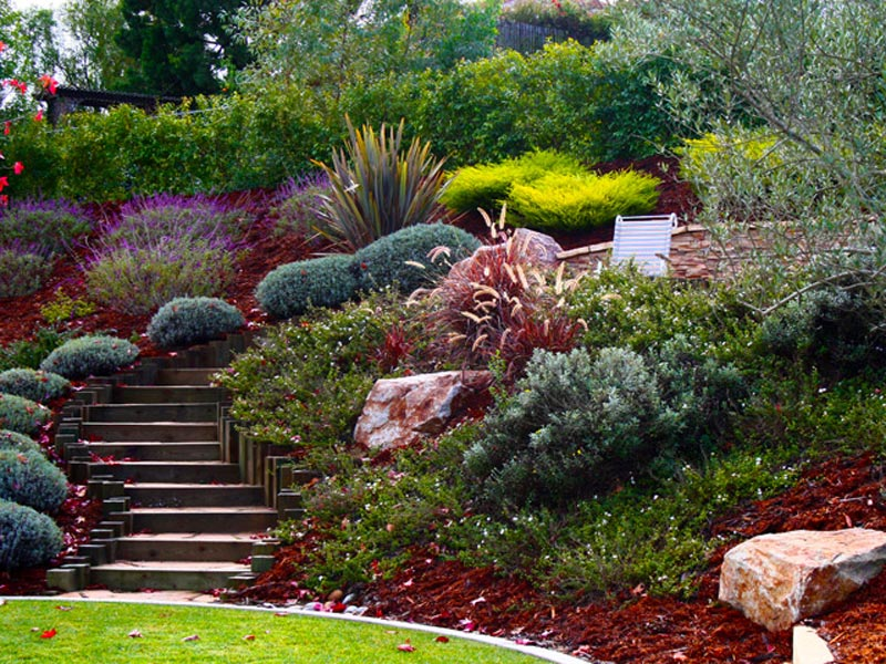 Hillside-Landscaping-Pictures