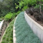 Hillside-Landscaping-Plants