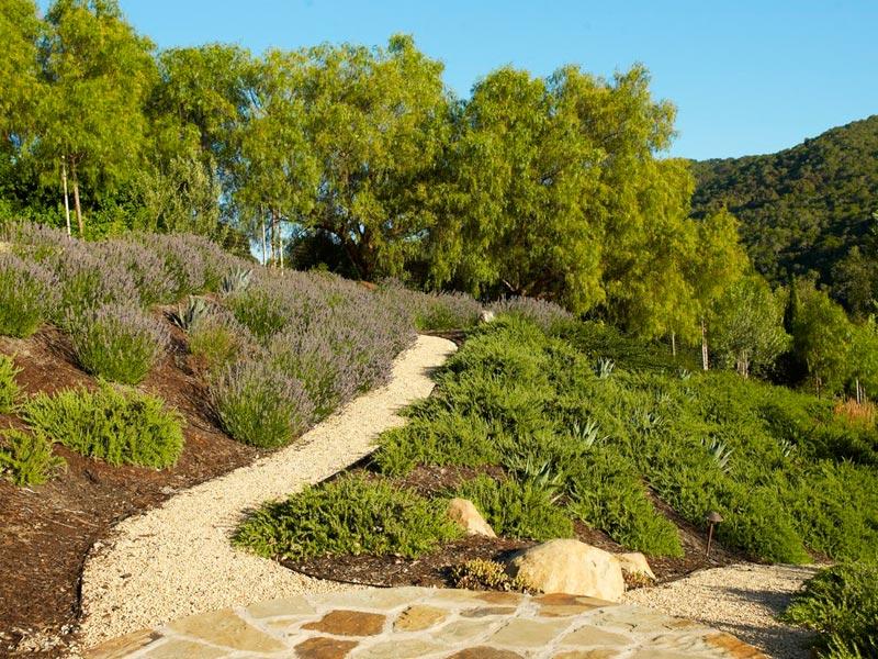 Hillside-Landscaping-Reno-Nv
