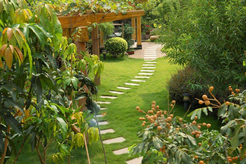 How-To-Landscape-Your-Yard-Quenchers