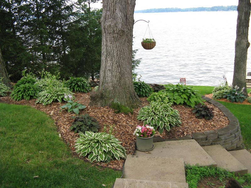 How-To-Landscape-Your-Yard-Questions