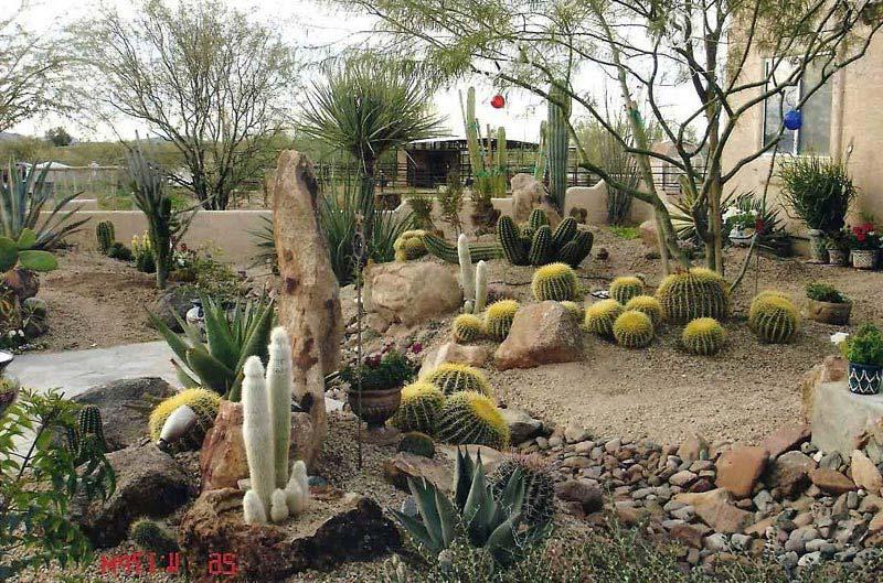 Inexpensive-Desert-Landscaping-Ideas
