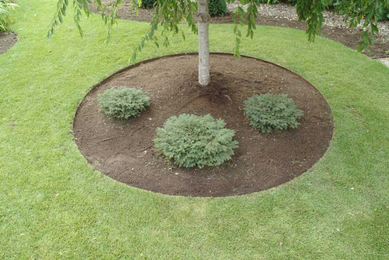 Inexpensive-Landscaping-Ideas-Pictures
