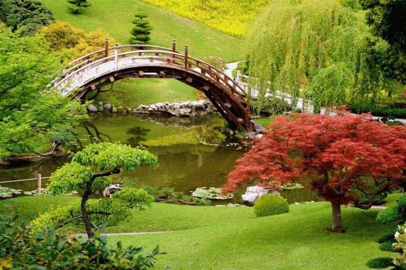 Japanese garden gate design landscape design for Landscape design books