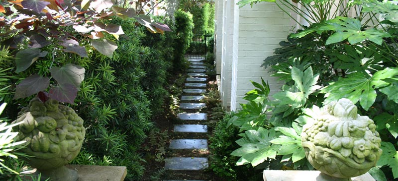 Landscape-Architect-Wilmington-Nc
