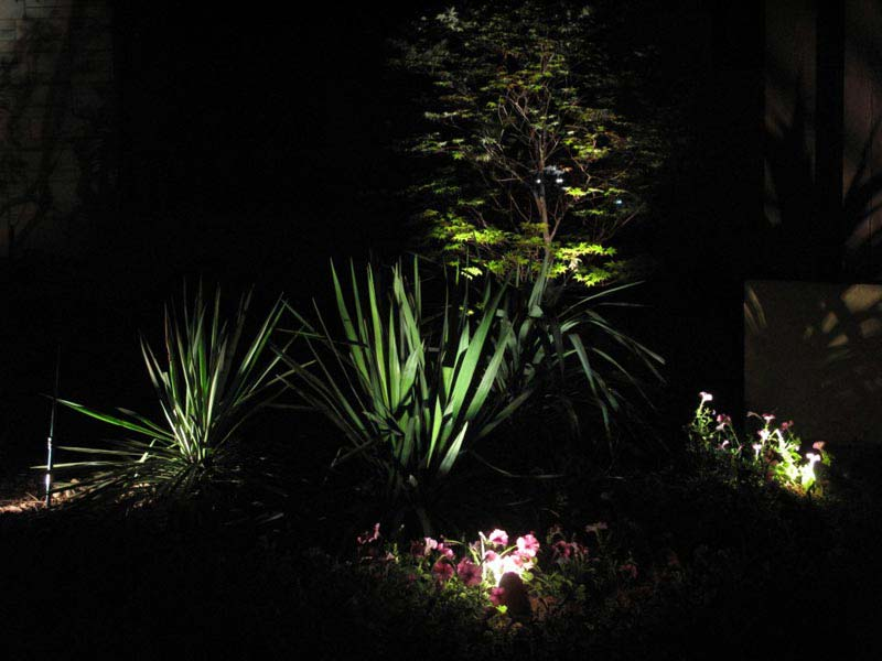 Landscape-Lighting-Design-Software