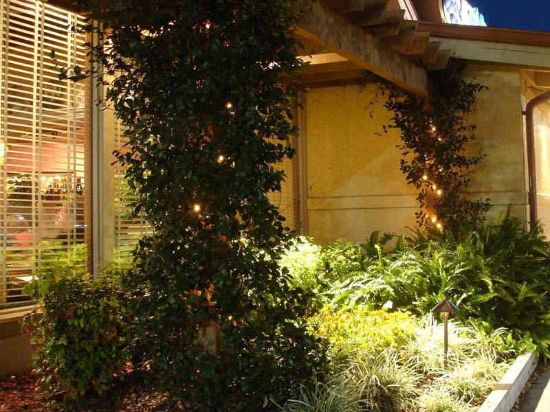 Landscape-Lighting-Fort-Myers