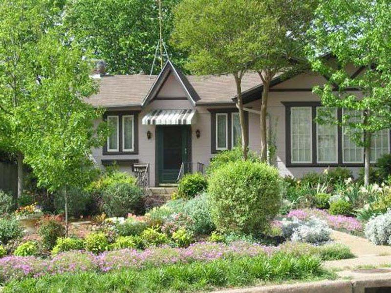Landscaping-Bushes-And-Shrubs-Pictures