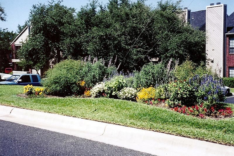 Landscaping-Dallas-Water